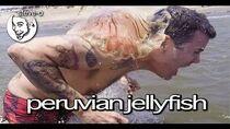 Peruvian Jellyfish Stunt - Steve-O