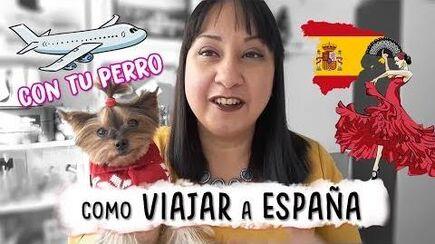 COMO VIAJAR CON TU PERRO A ESPAÑA - Aracelli Vlogs