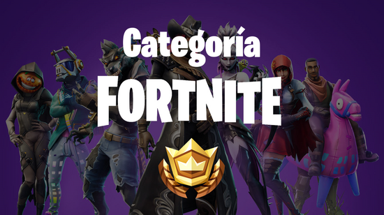 CATFortnite