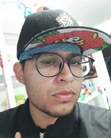 DIEGO MEXIVERGAS