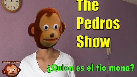 ¿Quien es pedro, el mono? Primer video
