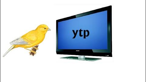 A crazy old guy forces his pet canary to watch cartoons