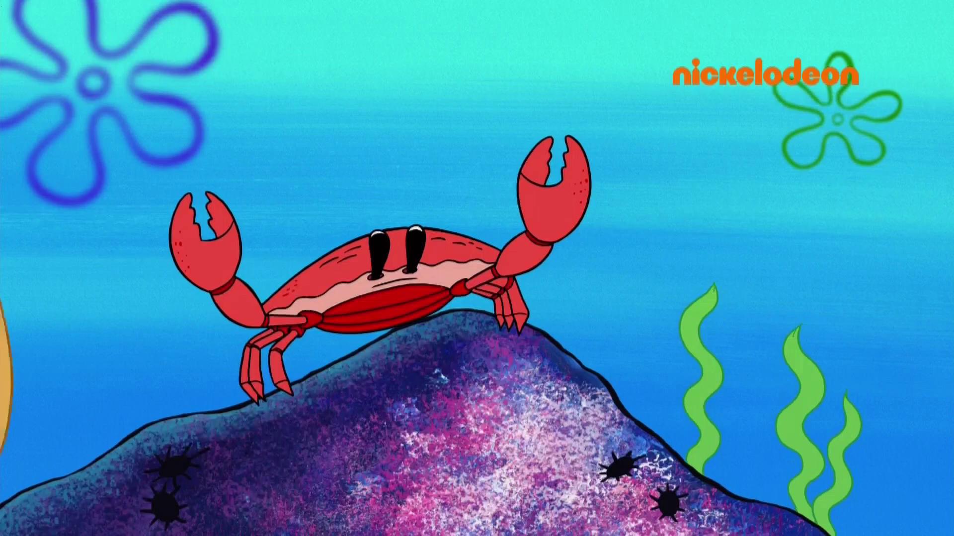 Realistic Mr Krabs Youtube Poop Wiki Fandom Powered By