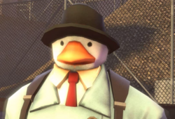 Duck N----