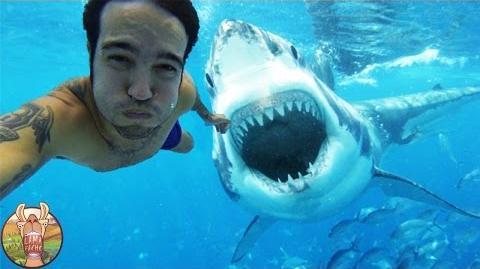 10 Selfies Pris Juste Avant La MORT !!!