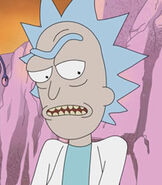 Rick-rick-and-morty-76.4