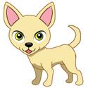 Pet (14)