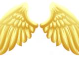 Golden Dove Wings