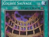 Colisée Sauvage