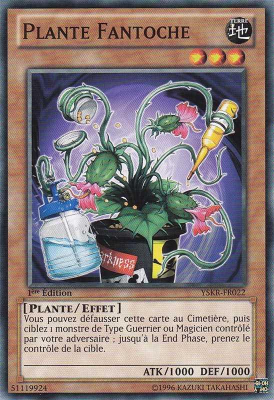 PlanteFantoche-YSKR-FR-C-1E