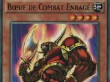 Bœuf de Combat Enragé