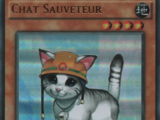 Chat Sauveteur