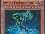 Esprit de la Terre Immortel Ccarayhua