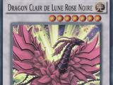 Dragon Clair de Lune Rose Noire