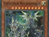 Exécuteur Métaphysique