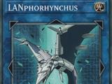LANphorhynchus