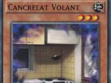 Cancrelat Volant