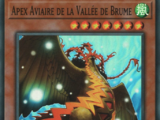 Apex Aviaire de la Vallée de Brume