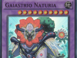 Gaiastrio Naturia