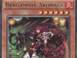 Bergamote Arômage
