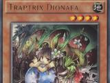 Traptrix Dionaea