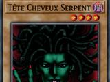 Tête Cheveux Serpent