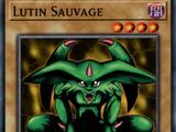Lutin Sauvage
