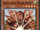 Senju aux Mille Mains