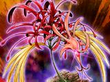 Amaryllis Phénix