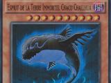 Esprit de la Terre Immortel Chacu Challhua