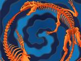 Fusion Fossile