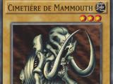 Cimetière de Mammouth