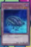 Tentacluster Darkwhip