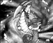 MarinejetSeahorse-JP-Manga-ZX-CA