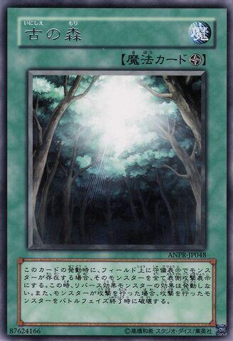 File:AncientForest-ANPR-JP-R.jpg