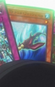TGDrillFish-JP-Anime-5D