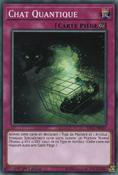 QuantumCat-SDCL-FR-C-1E