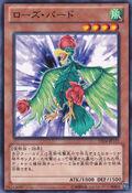 BirdofRoses-DE04-JP-C