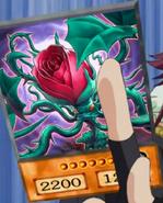 RoseTentacles-EN-Anime-5D