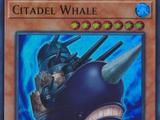 Citadel Whale