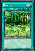 Forest-LOB-AU-UE-OP