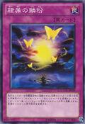 Butterflyoke-GAOV-JP-C
