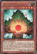 EcoMysticalSpiritoftheForest-REDU-FR-R-1E