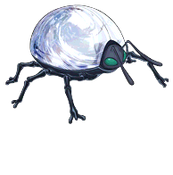 MirrorLadybug-DULI-EN-VG-NC