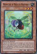 NaturiaFruitfly-HA03-FR-SR-1E