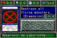 LabyrinthTank-DDM-FR-VG