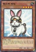 RescueRabbit-SR04-KR-C-1E