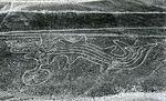 Fish NazcaLine