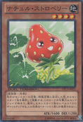 NaturiaStrawberry-DTC3-JP-DNPR-DT