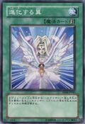 TranscendentWings-EE04-JP-C